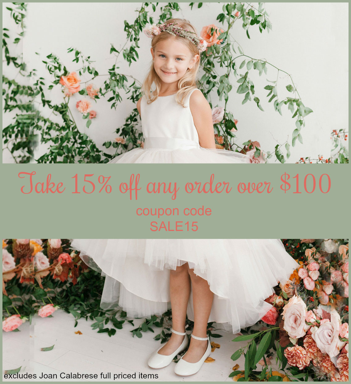 Save 15% on orders over $100